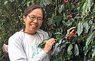 森林農法のコーヒーで守る山の暮らし