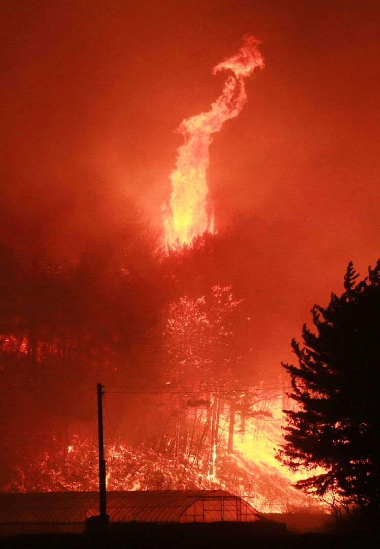 韓国・江原道で山火事