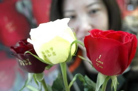世界のバレンタイン 写真特集