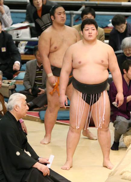 3月の大相撲春場所で、幕下10枚...