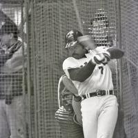 テリー・ウィットフィールド外野手 ▽出身米国カリフォ…:「助っ人 ...