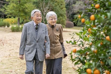 ミカンの木を観賞される上皇ご夫妻=11月24日、東京都港区の仙洞仮御所(宮内庁提供)